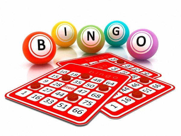 Image result for Offline Bingo